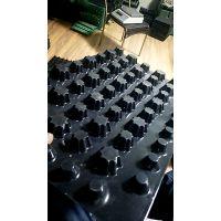 [安徽]屋面疏水板生产厂家HDPE车库专用疏水板滤水板排水板价格