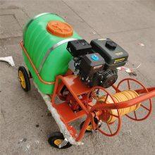 手推式汽油高压喷雾器 多功能启航手推式果树大棚打药机 果园风送式打药机