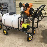 消毒杀虫喷雾器 启航汽油高压杀虫打药机 养殖场拉管式消毒机价格