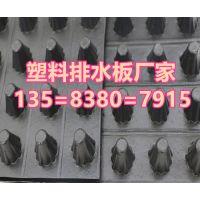 H10mm//H20mm厚排水板价格