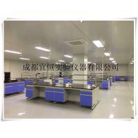 四川资阳实验室家具,宜恒通风柜,实验台L*750*850