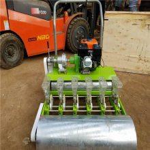 汽油播种机价格 精播蔬菜使用的汽油播种机 润丰