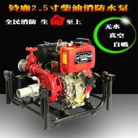 2.5寸柴油机手抬式消防泵