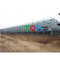 安徽智能温室大棚建设与报价蔬菜大棚热镀锌骨架造价