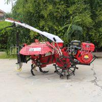 志成汽油四驱微耕机 多功能小型果园挖沟机 手扶式大棚管理松土机操作简单