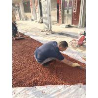 桓石透水颗粒、彩色无砂混凝土、多孔性地坪的物理性能及特点 乐山市 峨边彝族,马边彝族