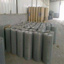 1/2寸不锈钢电焊网 pvc电焊网 焊网