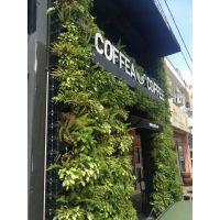 企业背景墙公司文化墙办公区背景墙LOGO与植物墙想结合