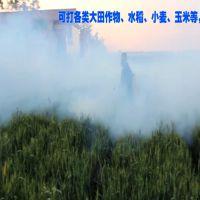 背负式小型水雾机 轻便杀虫喷药弥雾机