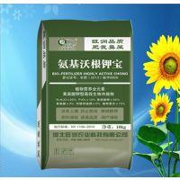 旺润芹菜专用肥 蔬菜前期冲施肥 芹菜黄腐殖酸肥料 含有微量元素肥料