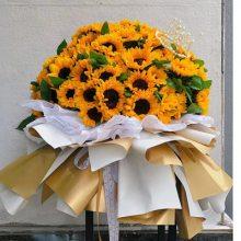 南宁市春节鲜花销售15296564995春节百合玫瑰花富贵竹鲜花送花上门电话