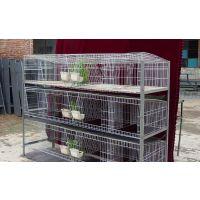 现货商品兔笼 定制子母笼 加粗加密24位养殖商品笼 低碳钢配件
