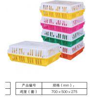 广西南宁塑料鸡笼 成鸡运输周转笼 养殖场育鸡笼塑料鸭笼