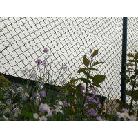 厂家 球厂勾花围网栏 体育场护栏 网体高防爬翻越。