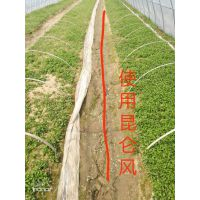 育苗专用肥蔬菜育苗叶面肥苗齐苗壮增产套餐
