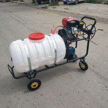高压远程动力喷雾器 手推式汽油打药机 乐丰机械