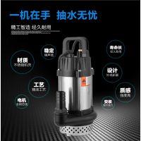 48V60V永磁无刷直流潜水泵1寸2寸3寸电动车电瓶车抽水泵