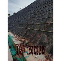 山体边坡防护高尔凡加筋麦克垫生产厂家