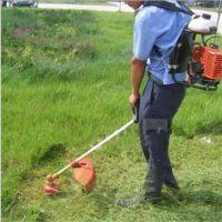 电动锄草机 果树背负式锄草机 宏瑞牌微型松土除草设备
