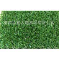 仿真草坪户外人造塑料假草坪地毯室内装饰阳台绿植幼儿园人工草皮