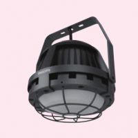 飞利浦BY950P隔爆型LED平台灯 采油厂石油厂专用灯具