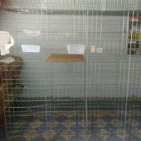 利港笼具主要生产广西耐用型12位鸽子笼12位肉鸽笼12位镀锌白鸽笼