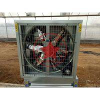 青州瀚洋DW-1380型负压风机,温室专用排风降温风机