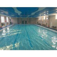 瀚宇泳池水处理|臭氧发生器|可实地考察|提供安装
