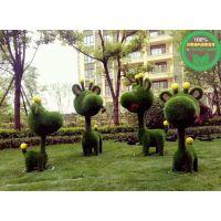太仓市哪里定制五色草真植物绿雕价格咨询