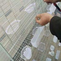 批发12位鸽子笼 鸽子笼厂家找河北利港丝网