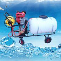 徐州手推式喷雾器 麦田拉管打药机价格 园林机械设备