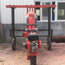志成厂家热卖自走式喷雾机高杆作物杀虫车乘坐式打药车