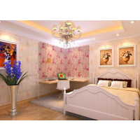 安徽室美E家全屋整装加盟品牌真的适合投资吗?