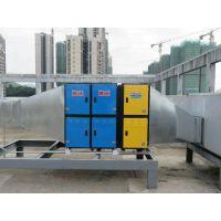 广州白云山中一药业有限公司工业废气处理净化器