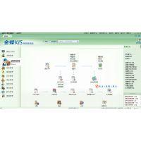 金蝶财务软件迷你/标准版/专业版/商贸金蝶KIS财务记账软件加密狗