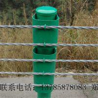 缆索护栏厂家 景区柔性防撞栏 缆索护栏价格