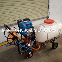 泰安联民供应 供应200L打药机 喷药机 射程远 汽油手推式喷雾机