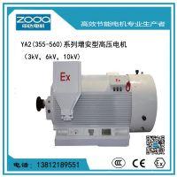 紧凑型高压10000V电动机Y2-HV 400-4-355KW电机ZODA 厂家