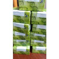 笃玛 兔单胺氧化酶A(MAOA) ELISA 试剂盒 产品价格