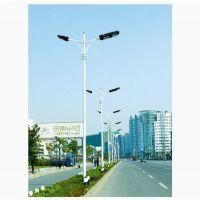 保定利微路灯杆 厂家供应 室外照明灯具灯杆 照明路灯杆