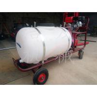 植保机械高压喷雾器 瓜果蔬菜喷雾器 园林打药水药机