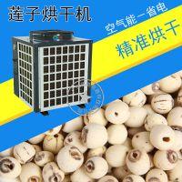 泰保TB-ZT-HGJ06P莲子烘干机 竹笋 辣椒 烘干设备 除湿干燥设备 广州厂家