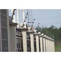 东莞电子围栏防盗报警系统