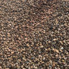 深圳鹅卵石多少钱一吨?供应天然鱼池石 装饰造景铺路鹅卵石 全国发货石材