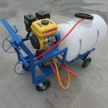 果园高压农用喷雾器 手推式汽油动力打药机图片 乐民牌