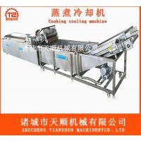 速冻牛肝菌块专用清洗漂烫流水线@天顺供应商
