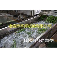 华邦牌全自动蔬菜清洗机 气泡清洗机 多功能洗菜机
