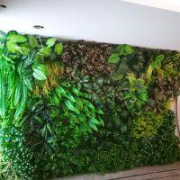 东莞紫萱仿工艺品 真植物墙 植物围墙 绿篱墙生产 假植物墙生产 立体绿化 园林景观