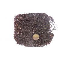 中药材鸡冠花种子红色花冠价格优惠纯新籽回收产品效益稳定