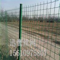 迅鹰 铁丝网 钢丝网围栏 养殖护栏网 防护网厂家